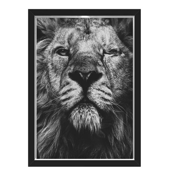 QUADRO CAIXA 33X43  NERDERIA E LOJARIA lion eye preto