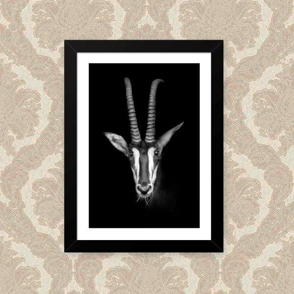 Quadro Decorativo 33x43cm Nerderia e Lojaria p&b animal preto