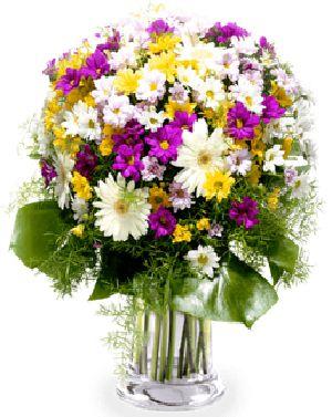 Buquê de Flores Brasilia 2 | Entrega Grátis | Dizeres Grátis