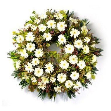 Coroa de Flores Brasilia Especial 2 | Entrega Grátis | Dizeres Grátis
