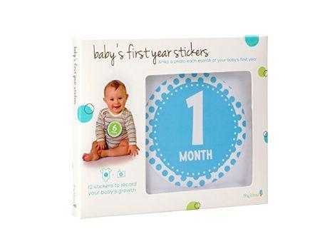 12 adesivos para registrar o primeiro ano do bebê Tiny Ideas
