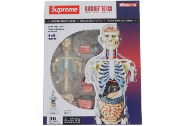 SUPREME - Boneco Anatômico Torso Masculino -NOVO-