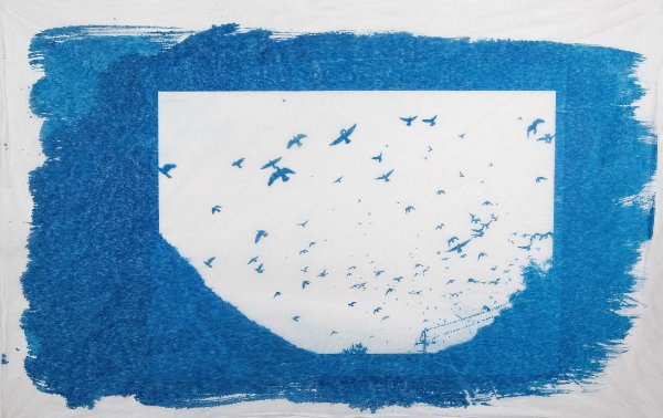 Pássaros Cianótipo I - Silvana Tinelli