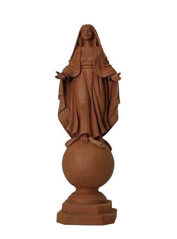 Nossa Senhora das Graças I - Leonilson Arcanjo