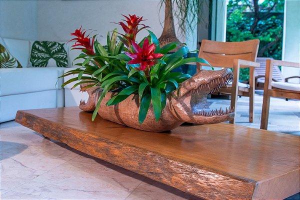 Gamela de madeira Jacaré com duas cabeças - João Correia