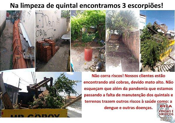 Limpeza de quintal cortando mato e removendo entulhos. (Cuidado com a dengue)