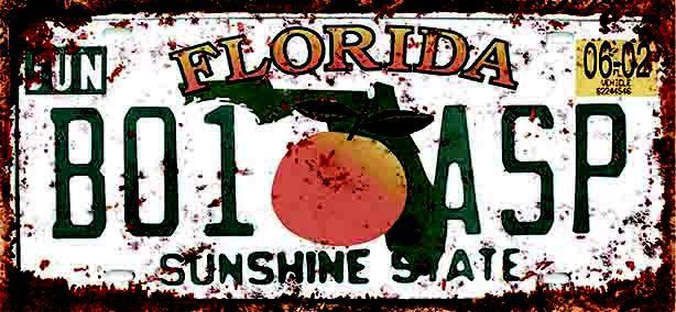Placa Decorativa Florida 15x30