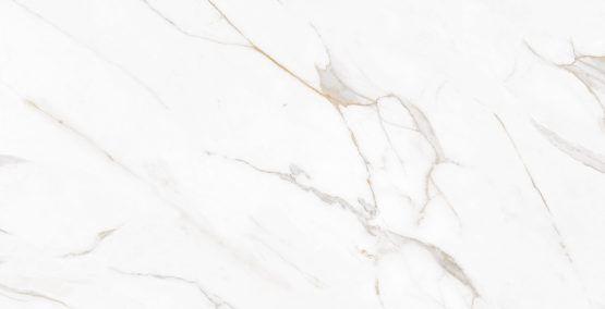 Porcelanato Polido P60523 62X1,20