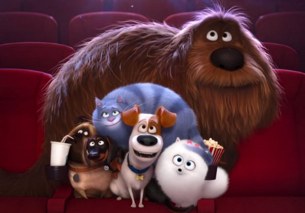 Painel TNT Pets - A Vida Secreta dos Bichos