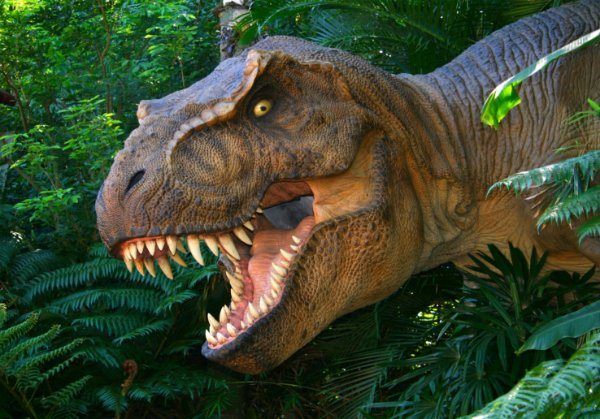 Painel TNT Dinossauro