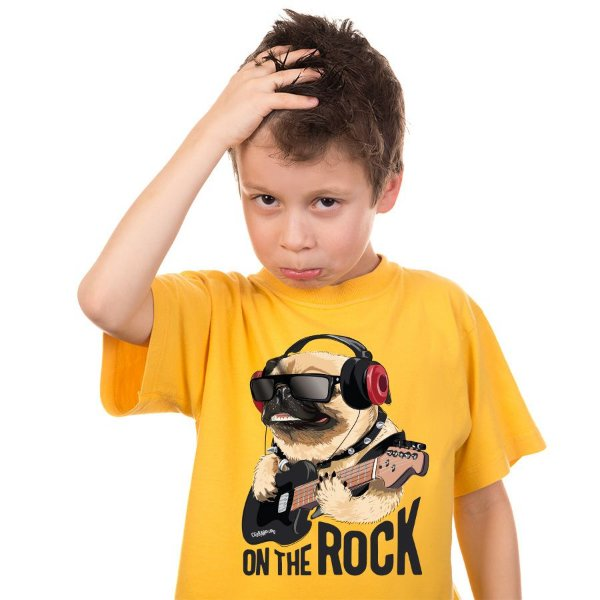 Camiseta Infantil Pug On The Rock