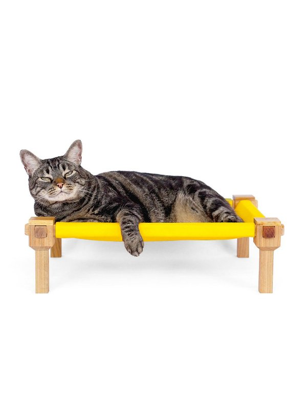 Cama Alta de Chão  Para Gatos