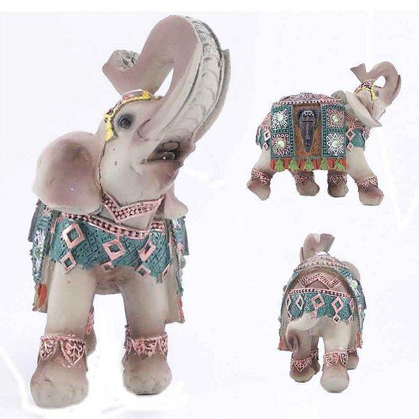Elefante Étnico de cor clara