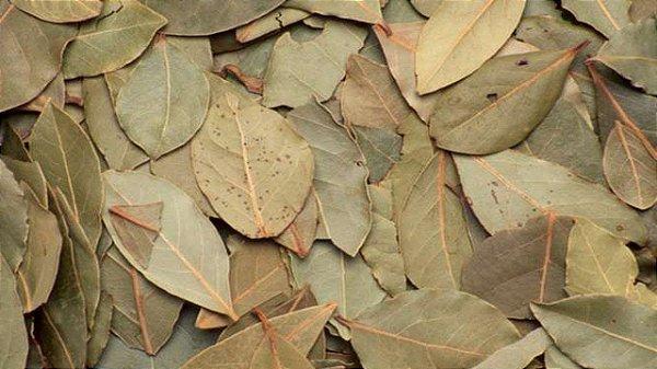 Folha de Louro seca (100g)