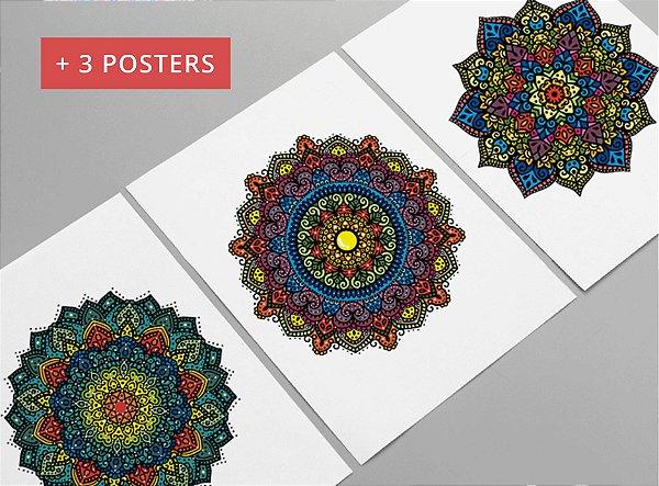 Kit com 3 Posters