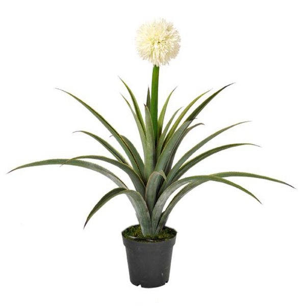 Planta Artificial Decorativa com Flor Branca - 75  x 56 cm