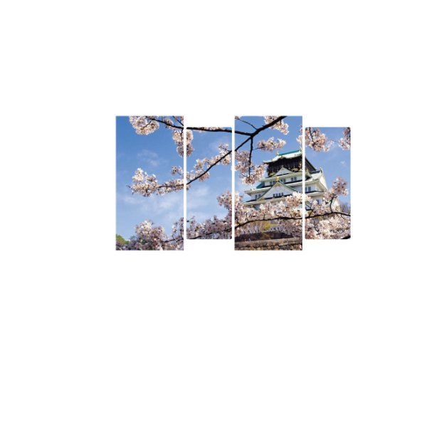 Flor Samura casa japonesa