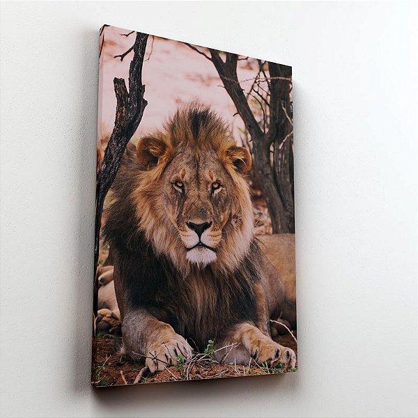 Leão realistic photo - Tela Canvas