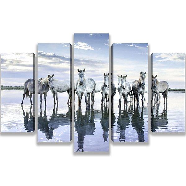 Cavalos Brancos - 5 Telas Canvas