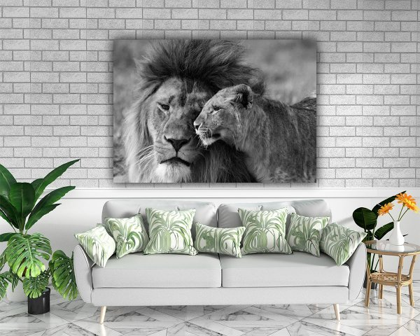 Casal Lion - Tela Canvas