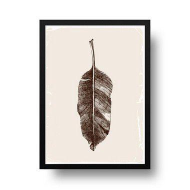 Folha seca- Emoldurado