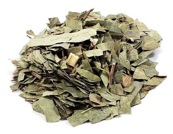 Folhas de Eucalipto Citriodora Desidratada (Sauna) - 30g
