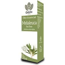 OLEO ESSENCIAL DE MELALEUCA (TEA TREE) - 10ML GABEA NATURAL