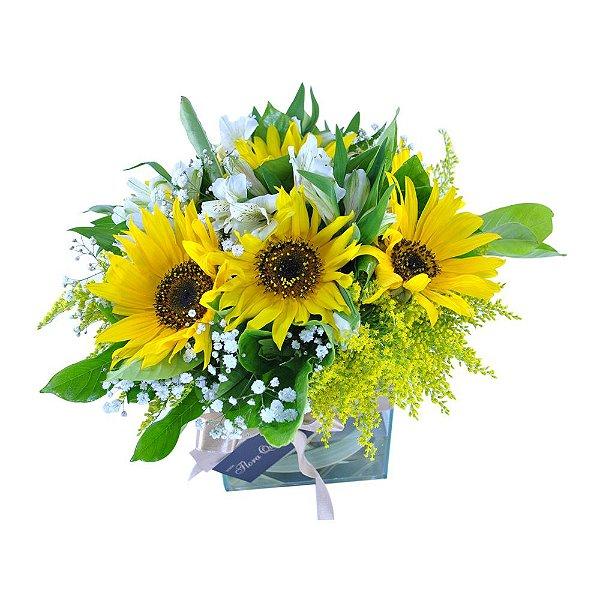 Bouquet Terrier de Girassóis