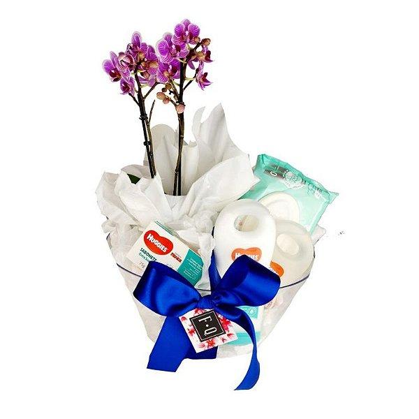 Kit Maternidade Mini Phale - HG