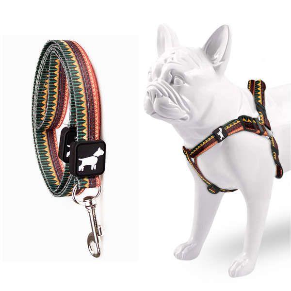 Peitoral e Guia Para Cachorro Don Dog Indie