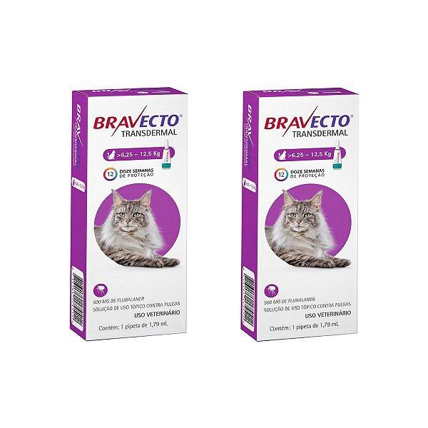 Combo 2 Antipulgas Bravecto 6,25 a 12,5kg Transdermal Gatos