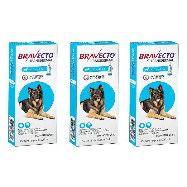 Combo 3 Antipulgas Bravecto 20 a 40kg Transdermal Cães
