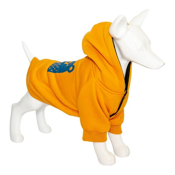 Roupa Cachorro Moletom Bear Orange Au