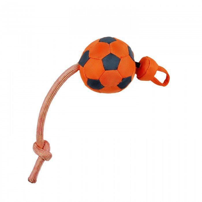 Brinquedo Cachorro Bola Flyng Soccer Ball Afp