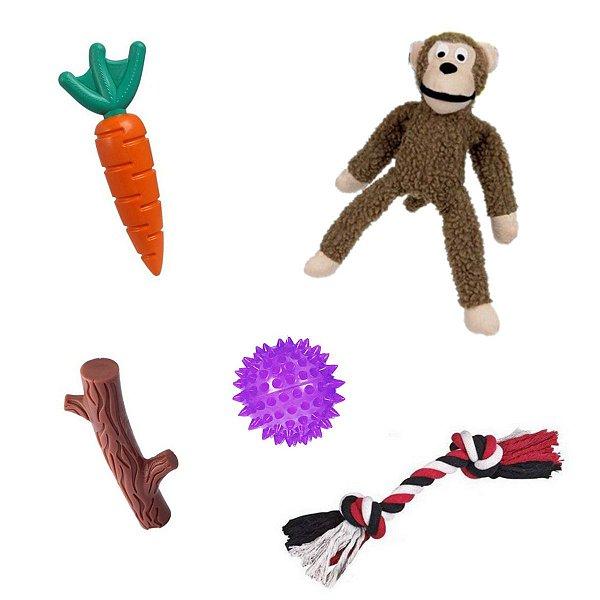 Brinquedo Cachorro Buddy Toys + Macaco + Corda + Bola Espinho