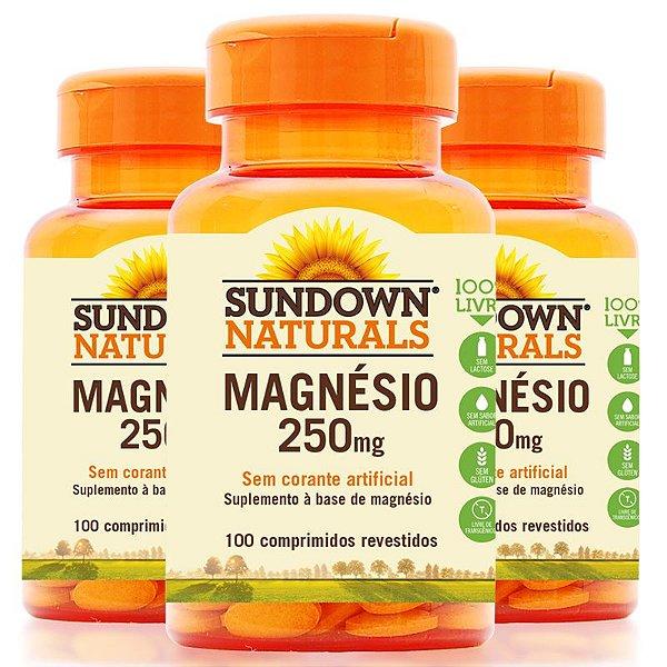 Kit - 3 Magnesium 250mg Sundown 100 Cápsulas