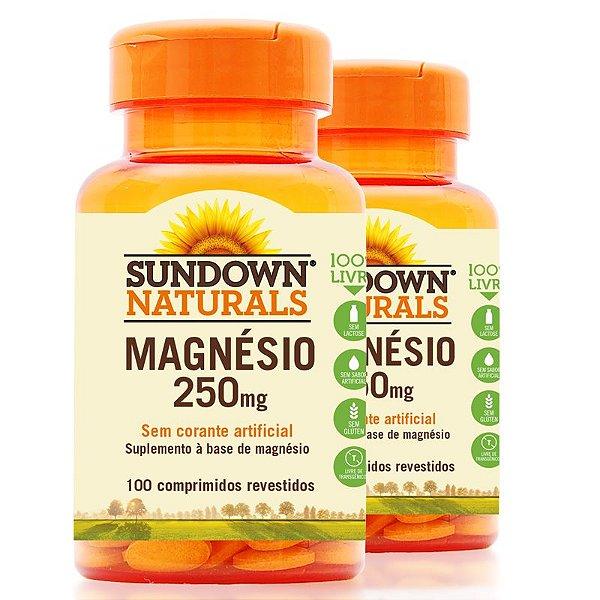Kit - 2 Magnesium 250mg Sundown 100 Cápsulas