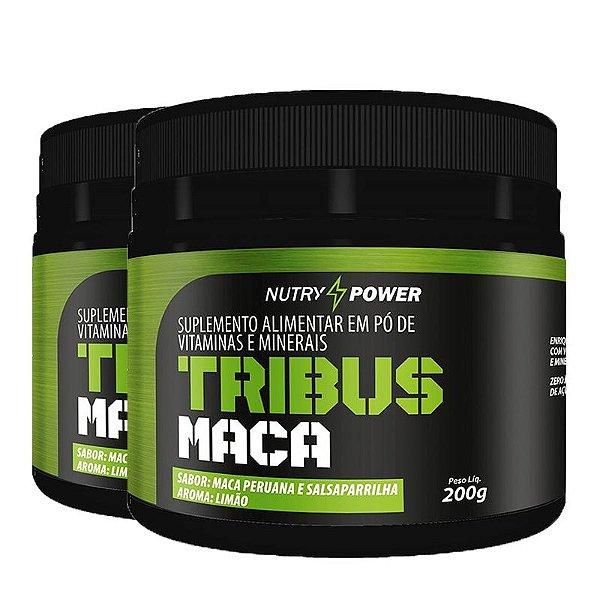Kit 2 Pós Treino tribus maca Apisnutri Nutry Power 200g