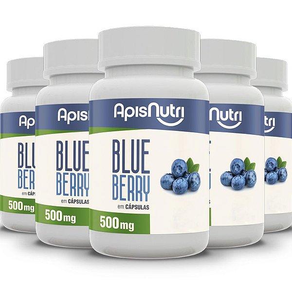 Kit 5 Blueberry Apisnutri 120 cápsulas