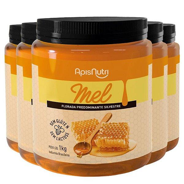 Kit 5 Mel em Pote 1kg Apisnutri