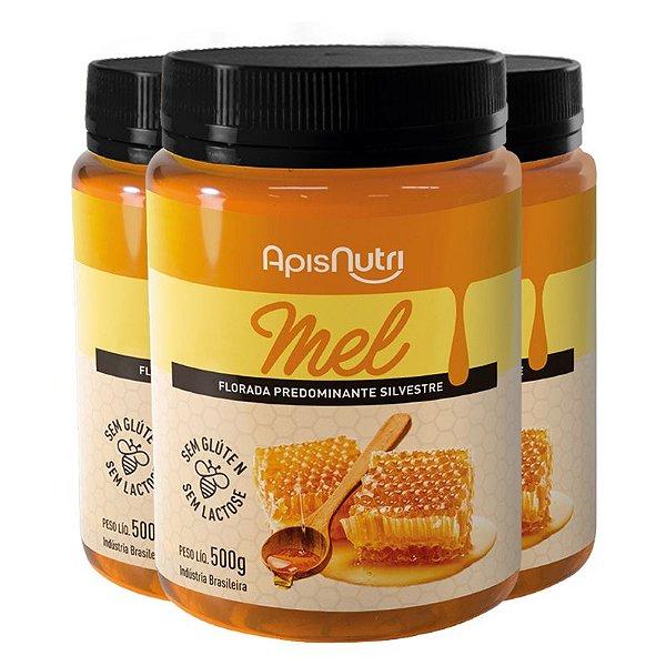 Kit 3 Mel em Pote 500g Apisnutri