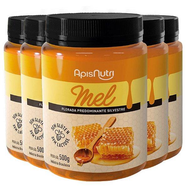 Kit 5 Mel em Pote 500g Apisnutri