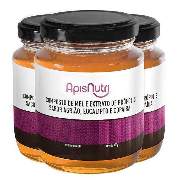 Kit 3 Composto de Mel sabor Agrião Apisnutri 300g