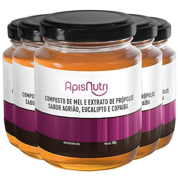 Kit 5 Composto de Mel sabor Agrião Apisnutri 300g