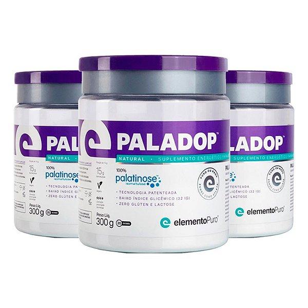 Kit 3 Paladop Palatinose Elemento Puro 300g Natural