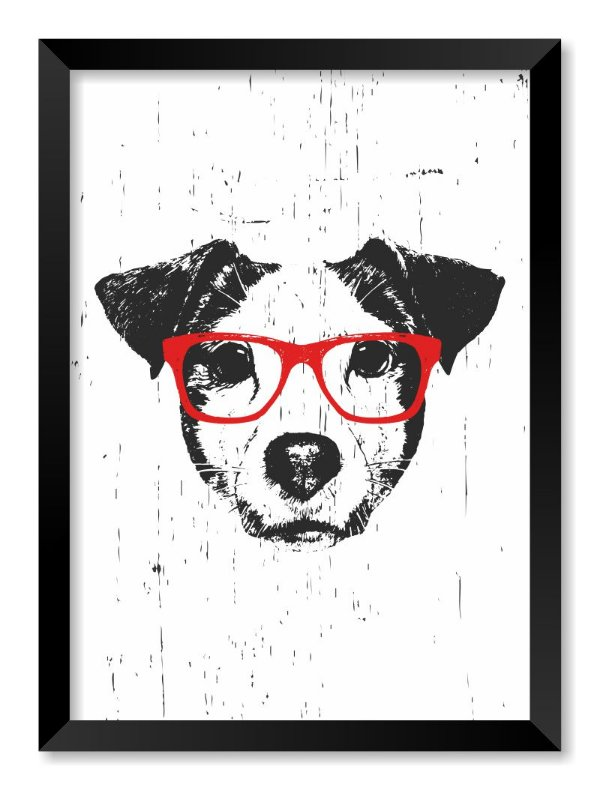Quadro Jack Russell Terrier