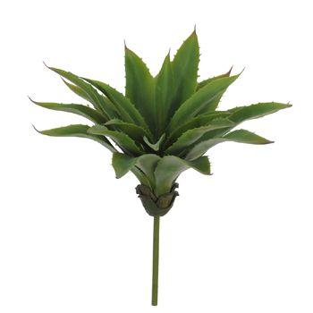 Suculenta Aloe Folha Abacaxi 30cm