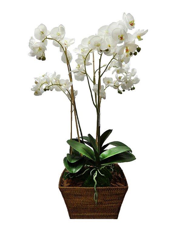 Orquidea Phalaenopsis Branca 5 Galhos 85cm