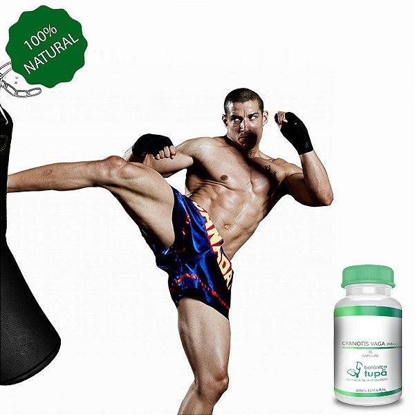 Cyanotis vaga 200 mg - Proteção Hepática e Aumento de Massa