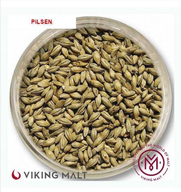 MALTE PILSEN - VIKING